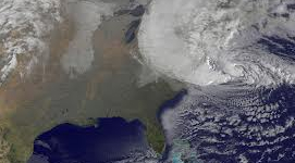 Veterinarians, clinic staff recount effects of Sandy...