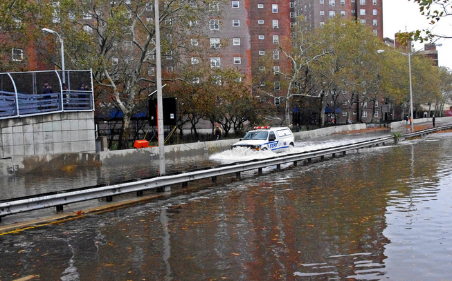 Veterinary clinics cope with Hurricane Sandy's aftermath...